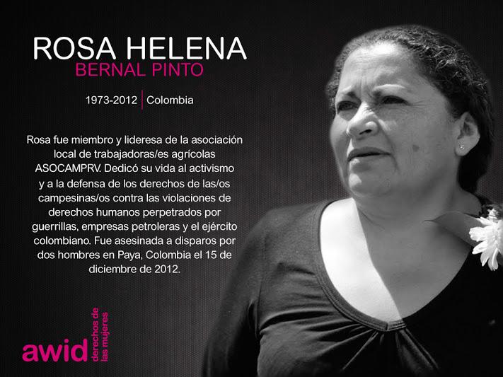 121_rosa-helena-bernal-pinto_sp.jpg