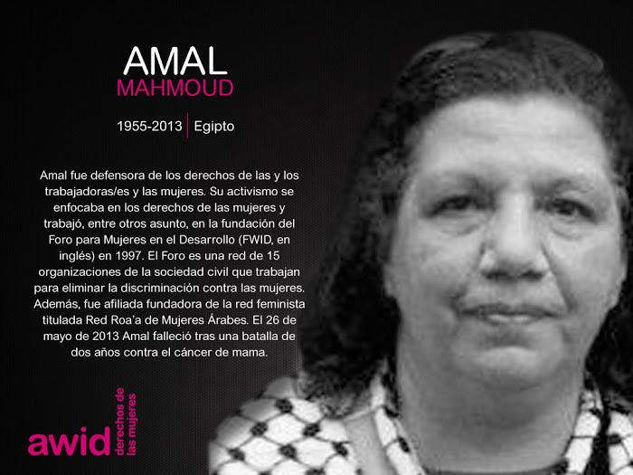 89_ahmal-mahmoud_sp.jpg
