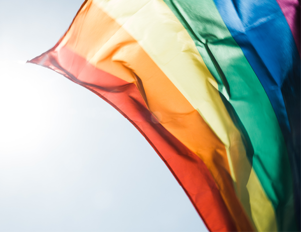 LGBTQI flag (photo: Peter Hershey / Unsplash) 610x470
