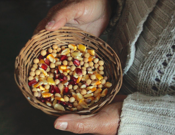 Paraguay Ceferina Guerrero hold a basket of native seeds (photo: Maria Sanz Dominguez)